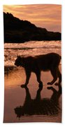Sunset Stroll Beach Towel