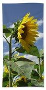 Sunshine Flowers Beach Towel