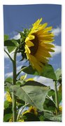 Sunshine Flowers Beach Sheet