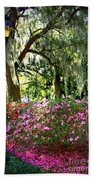 Sunshine Through Savannah Park Trees Beach Towel