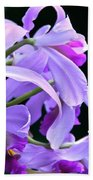 Super Orchid Beach Towel