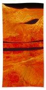 Surface Of Venus Beach Towel