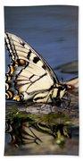 Swallowtail - Walking On Water Beach Towel
