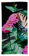 Swallowtail Among The Zinnias Beach Towel