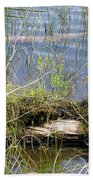 Swamp Beach Towel