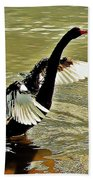 Swan Dance Beach Towel