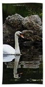 Swan I Beach Towel
