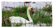 Swan's Marsh Beach Sheet