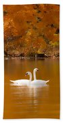 Swans Soft And Smooth Beach Towel