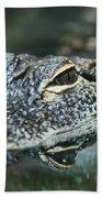 Sweet Baby Alligator Beach Sheet