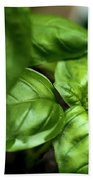Sweet Basil From The Garden Beach Towel
