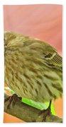 Sweet Finch Painted Effect Beach Towel