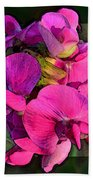 Sweet Pea Pop Out Photoart Square Beach Towel