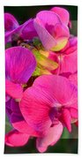 Sweet Pea Pop Out Square Beach Towel