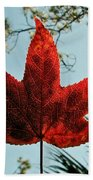 Sweetgum Beach Towel
