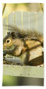 Swingin Squirrel Robber Beach Towel