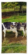 Tail Of Two Cows Beach Towel