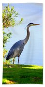 Tall Grey Heron Beach Towel
