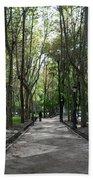 Tall Trees Of Madrid Beach Towel