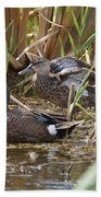 Teal Pair In The Cattails Beach Towel