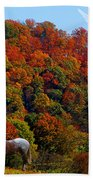 Tennessee Fall Beach Towel