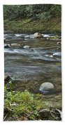 Tennessee Stream 6049 Beach Towel