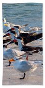Terns Beach Towel