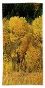 Teton Autumn Foliage Beach Towel
