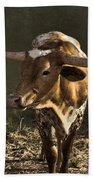 Texas Longhorn # 4 Beach Towel