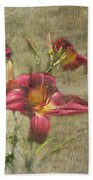 Textured Red Daylilies Beach Towel