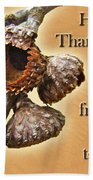Thanksgiving Card - Where Acorns Come From Beach Towel