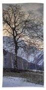 The Alps In Winter Beach Towel