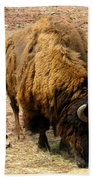 The American Buffalo Beach Towel