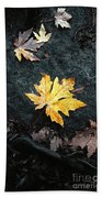 The Autumn Leaf Beach Towel