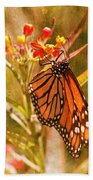 The Beauty Of A Butterfly Beach Towel