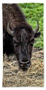 The Bison Stare Beach Towel