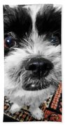 The Black And White Dog Beach Towel