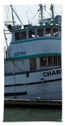 The Charlotte B Beach Towel by Chalet Roome-Rigdon
