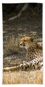 The Cheetah Wakes Up Beach Towel