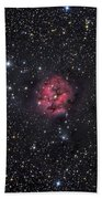 The Cocoon Nebula Beach Towel by Roth Ritter