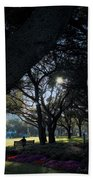 The Day's Reflection Limited Edition Bodecoarts Beach Towel