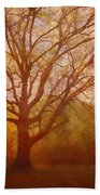 The Fairy Tree Beach Towel by Brett Pfister