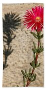 The Flower And Its Shadow Beach Towel