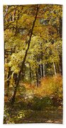 The Forest Beckons Beach Towel