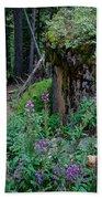 The Forest Trail Beach Sheet
