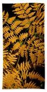The Golden Fern Beach Towel