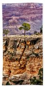 The Grand Canyon Iv Beach Towel
