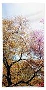 The Grandest Of Dreams - Cherry Blossoms - Brooklyn Botanic Garden Beach Towel
