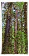The Hoh Rain Forest Beach Towel