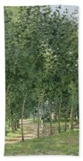 The House In The Forest Beach Towel